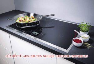 Sửa Bếp Từ Aeg
